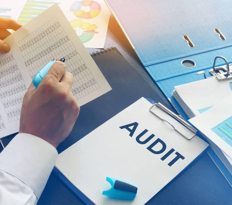 EuroNis audit