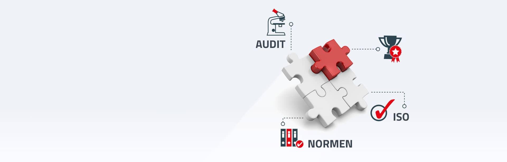 zertifizierung ISO 9001, Audit
